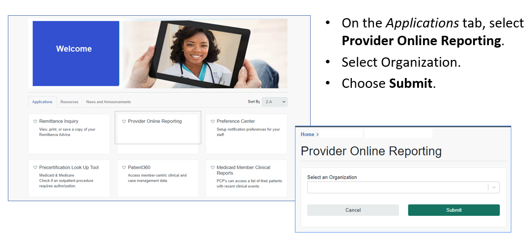 Provider Online Reporting1
